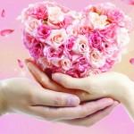 дарим любовь