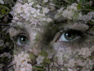 весна и фильмы