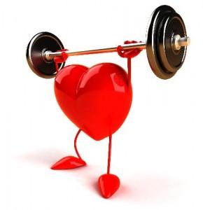 сердце в тонусе
