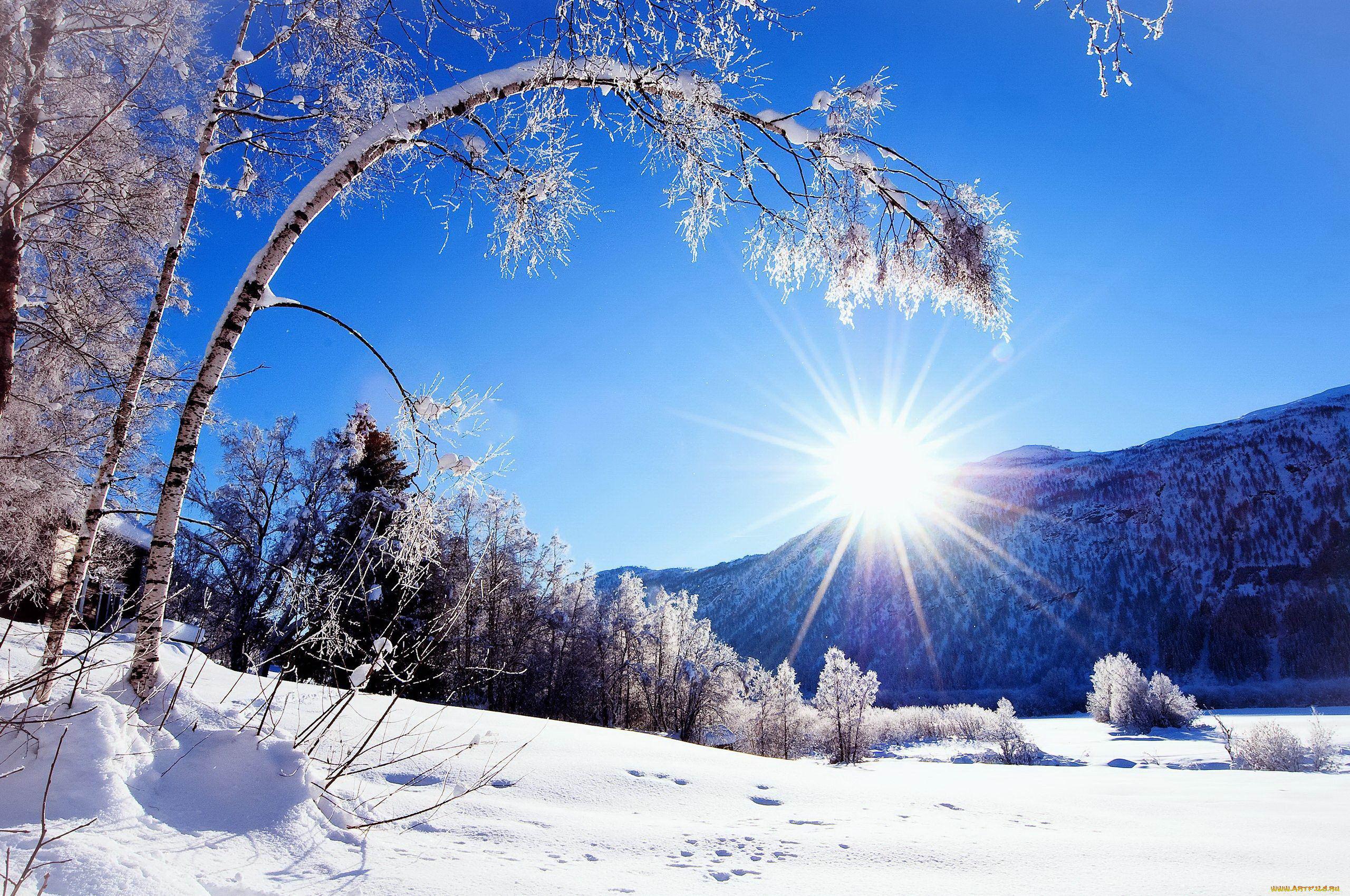 С началом зимы начинаем готовиться к