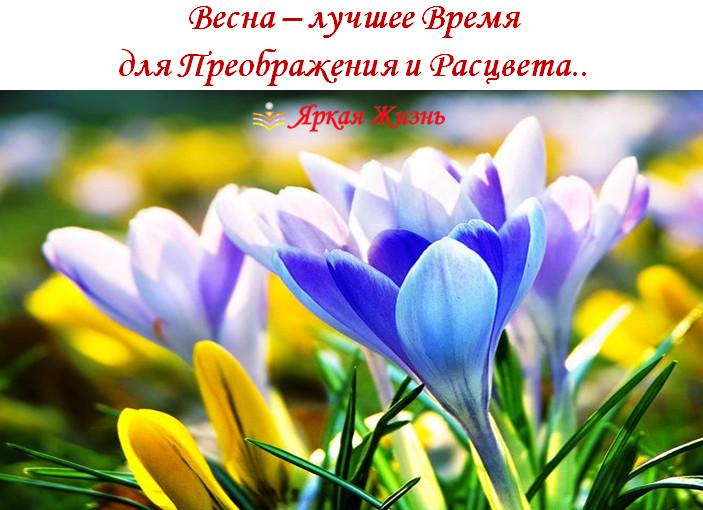 весна - время преображения