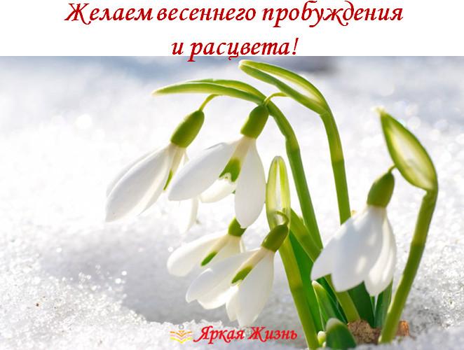 желаем расцвета