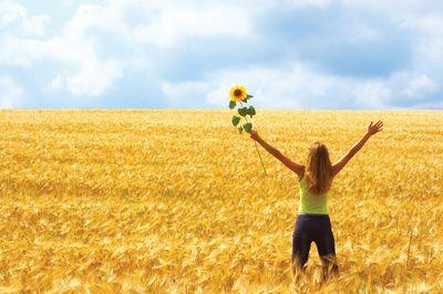 поле радость