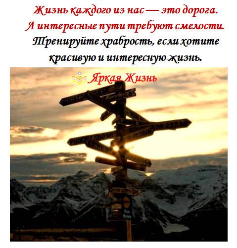 жизнь дорога