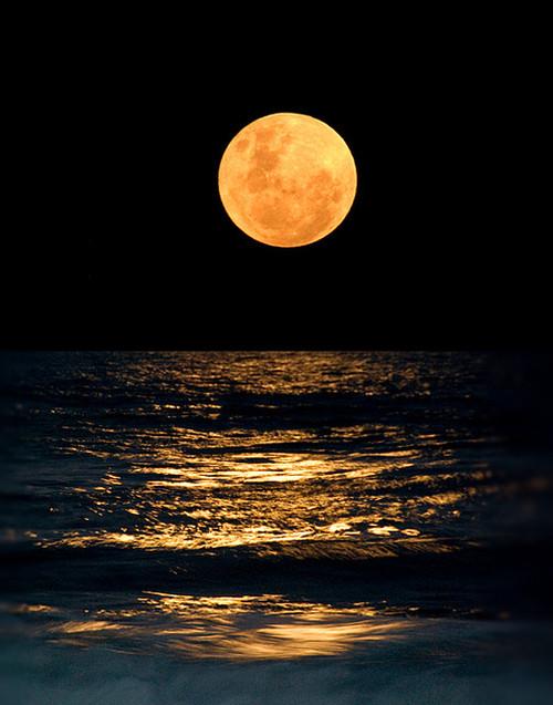 луна ноября
