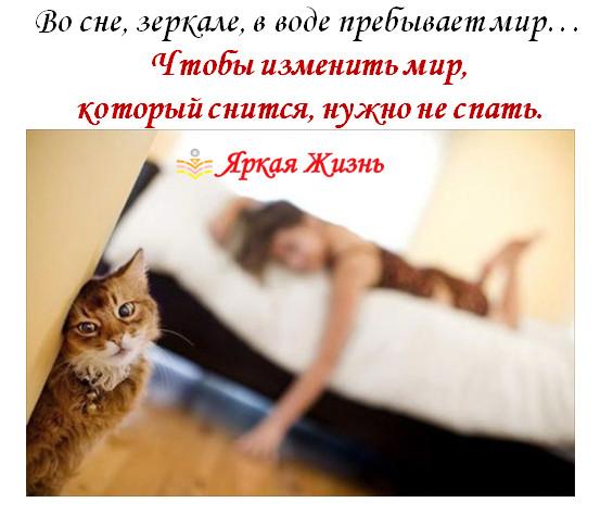 мир во сне