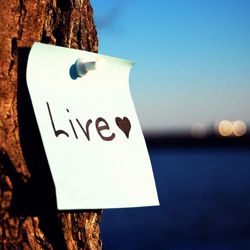 жизнь любовь