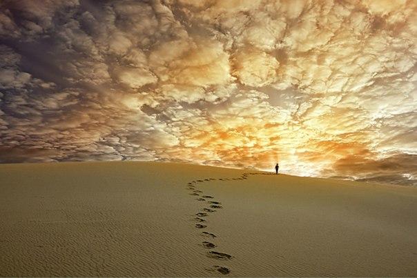 дорога в дюнах