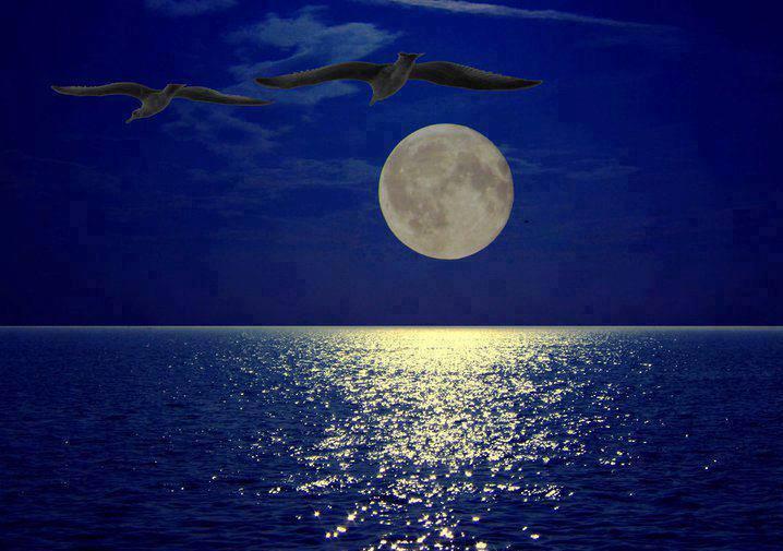 moon_sea